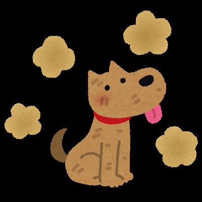 犬の体臭の画像