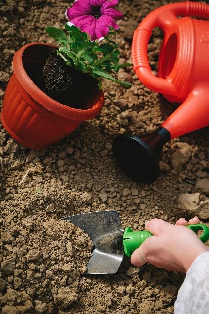 うんちを庭に埋める写真