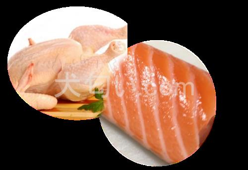 チキンとサーモンの写真