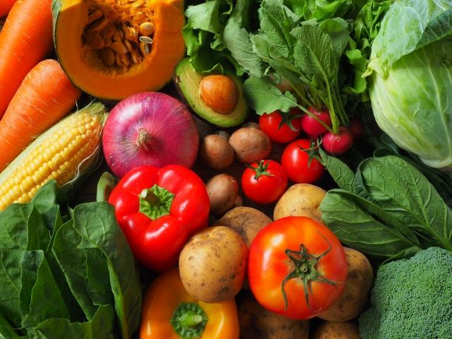 モグワンの原材料 野菜の写真